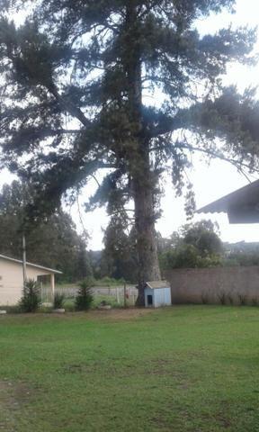 Vende-se chácara em Leão - Agudos do Sul (cód. A349 I) - Foto 5