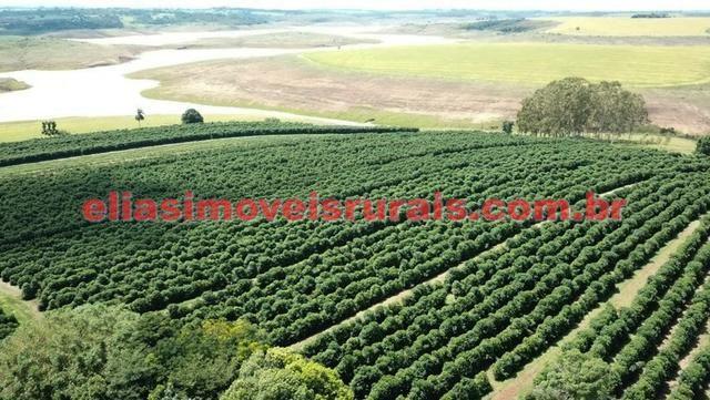 Fazenda de café - 110.000 pés - Patrocínio - MG - Foto 9