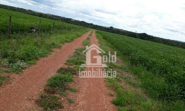 Fazenda à venda, 238 hectares por R$ 6.500.000 - Foto 3