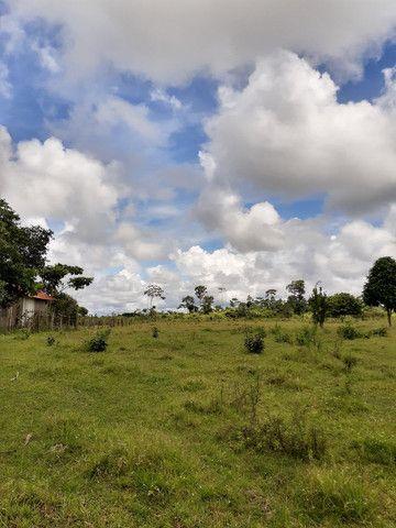 Chácara em Rio Branco - Foto 9