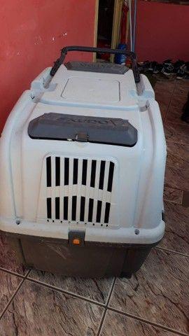 Caixa Transporte Skudo N°6 - Foto 3