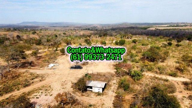 Chacara com Casa e fundo para o Rio Verde 25.000m2, 2 Quartos - Foto 5