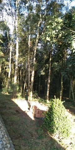 Área Colônia Zacarias - Foto 2