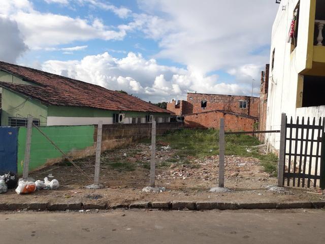 Terreno em São Lourenço - Foto 3