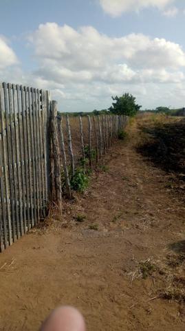 Vende-se terreno em Ocara - ce ou troco em outro terreno na região de Aquiraz - Foto 3