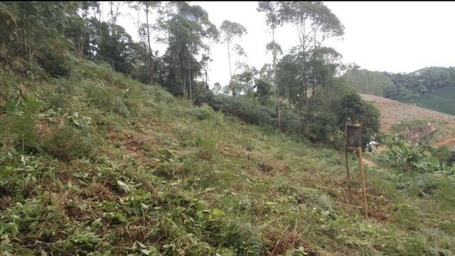 Vendo ou Troco Terreno 1.500m quadrados - Foto 4
