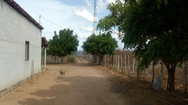 Vende-se terreno em Ocara - ce ou troco em outro terreno na região de Aquiraz - Foto 13