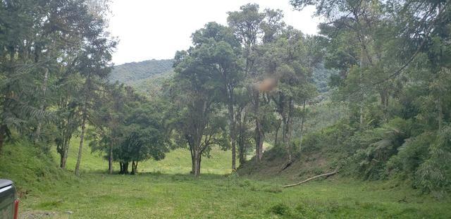 Terreno em Bom Retiro/área rural em Bom Retiro - Foto 9