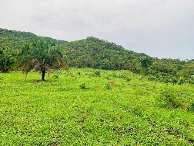 Fazenda Na Região da Agrovila  - Foto 7
