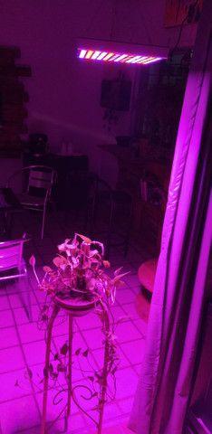 Full spectrum LED cultivo indoor 300w - R$300 - Foto 4