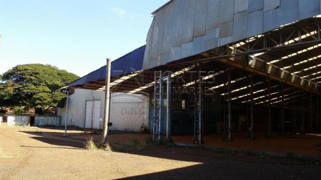 Loja comercial para alugar em Zona industrial, Sertaozinho cod:L18898 - Foto 17