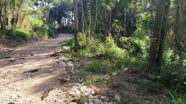 Chácara Agudos do Sul - 50 mts da Br c/ Tanque e rio - Foto 3