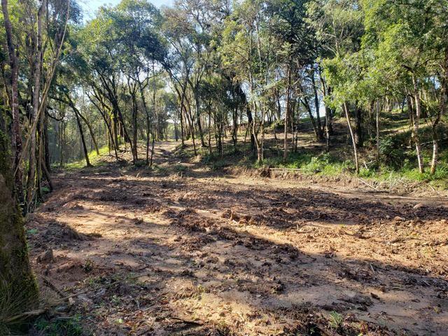 Chácara Agudos do Sul - 50 mts da Br c/ Tanque e rio - Foto 12