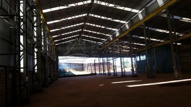 Loja comercial para alugar em Zona industrial, Sertaozinho cod:L18898 - Foto 2