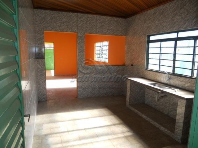 Casa para alugar com 2 dormitórios em Parque jaqueline, Jaboticabal cod:L4279 - Foto 7