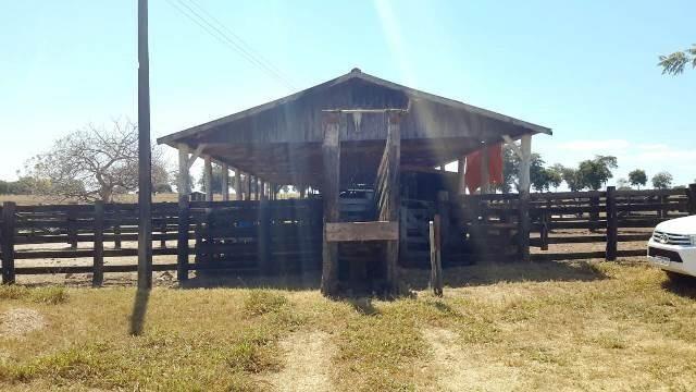 Fazenda 1485 ha Barra do Bugres MT - Foto 2