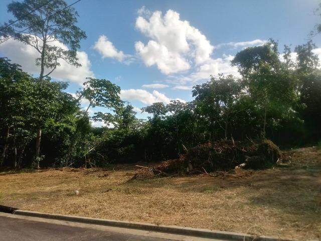 Residencial Naturaville - Lote L8 - Foto 17