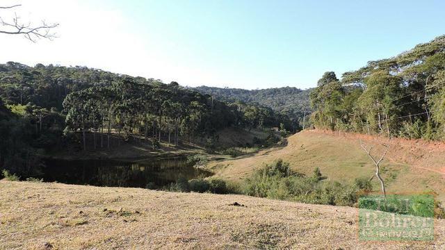 Fazenda com 588,71 hectares, situada na estrada Friburgo-Teresópolis, na altura de Vieira - Foto 12