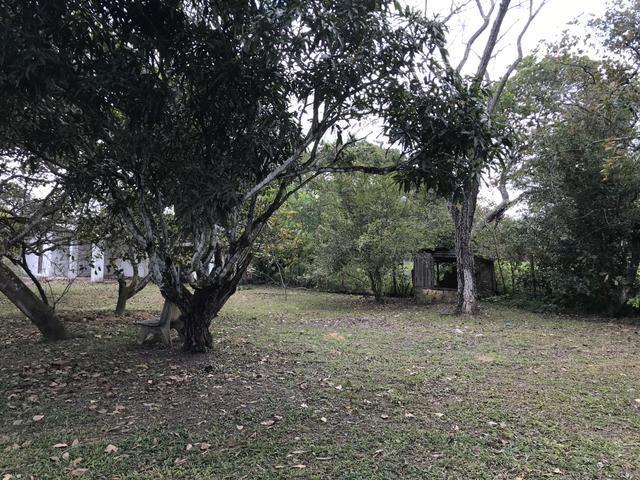 Aluga-se granja em aldeia km 9,5 - Foto 3