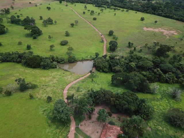 Fazenda em Bela Vista de Goiás de 15 Alqueires, à 45 km de Goiânia Dentro da Cidade - Foto 4
