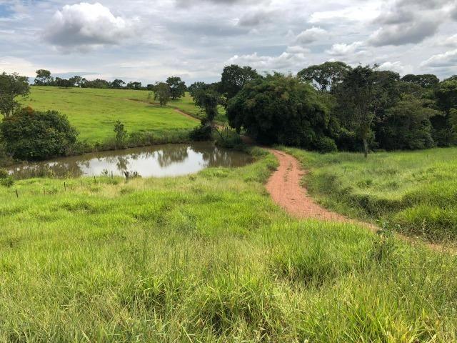 Fazenda em Bela Vista de Goiás de 15 Alqueires, à 45 km de Goiânia Dentro da Cidade - Foto 17
