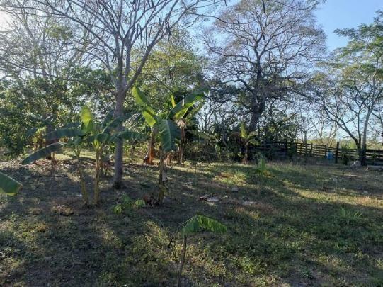 Chácara à venda em Zona rural, Santo antonio do leverger cod:21685 - Foto 13