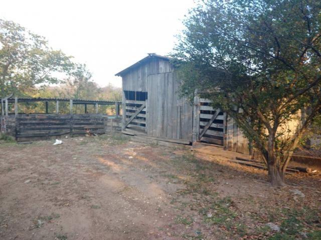 Chácara à venda em Zona rural, Cuiaba cod:20802 - Foto 5