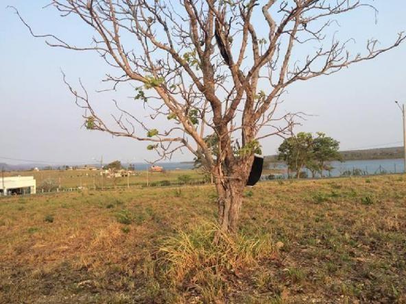Loteamento/condomínio à venda em Zona rural, Chapada dos guimaraes cod:21206 - Foto 4