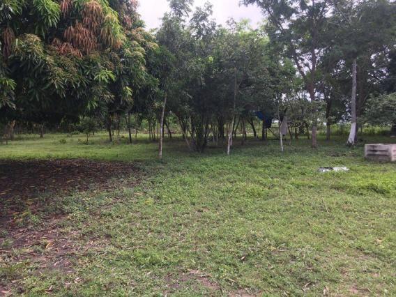 Chácara à venda em Zona rural, Cuiaba cod:21135 - Foto 11