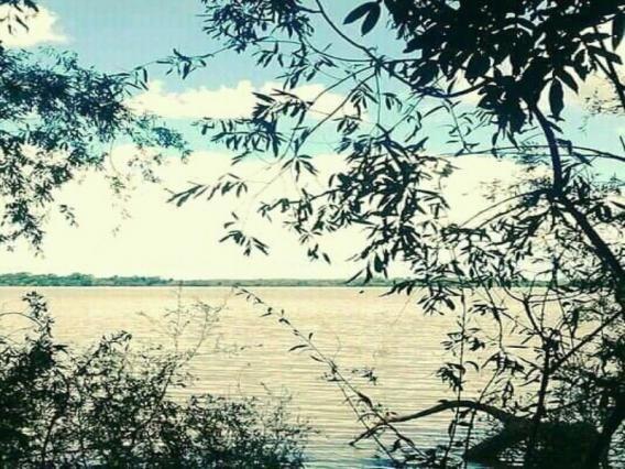 Sítio 3,0 hectares - porto batista - triunfo - rs