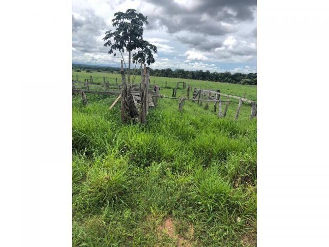 Chácara à venda em Rural, Nova mutum cod:22068 - Foto 5