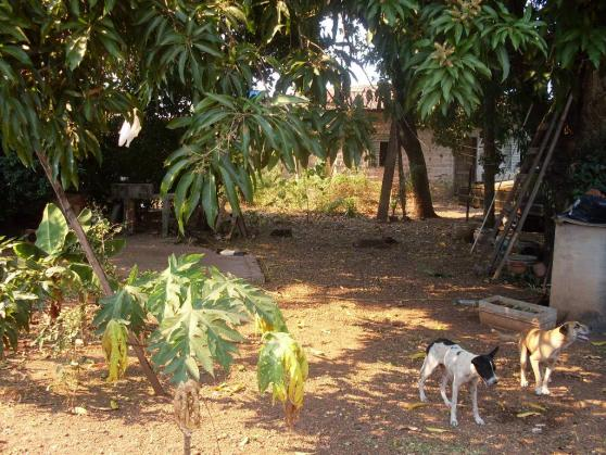 Loteamento/condomínio à venda em Jardim primavera, Cuiaba cod:10087 - Foto 12