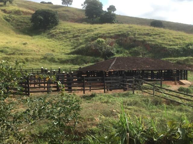 Fazenda 455.96 hectares - Governador Valadares/MG