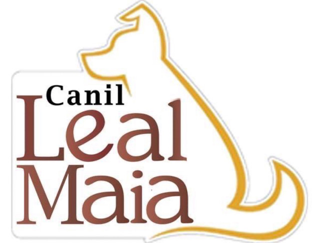 Canil Especializado na raça Lulu / Spitz Alemão