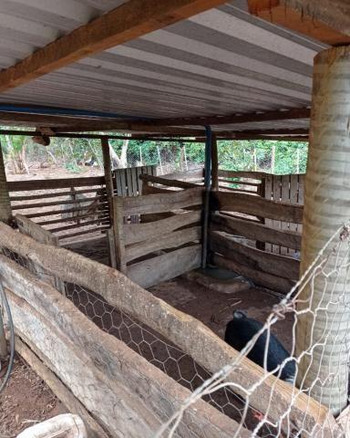 Sítio em Araguari - MG com 21 hectares - Foto 16