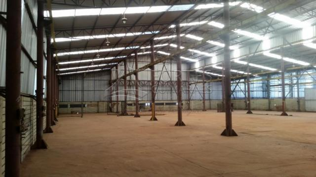 Loja comercial para alugar em Zona industrial, Sertaozinho cod:L18898 - Foto 8