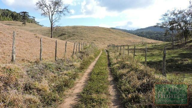 Fazenda com 588,71 hectares, situada na estrada Friburgo-Teresópolis, na altura de Vieira - Foto 15