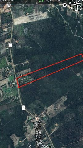 Vendo 20 hectares em Altos, BR343, asfalto, toda Infraestrutura