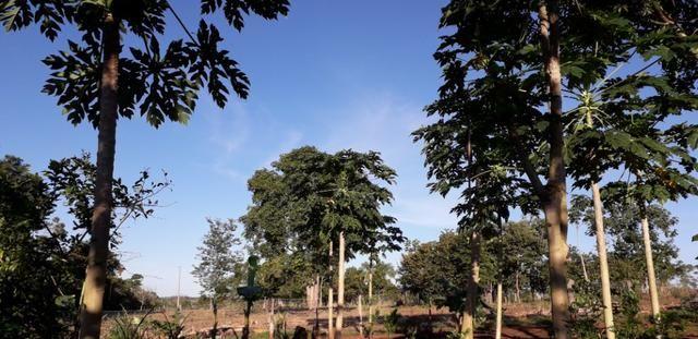 Chácara em Vila Bom Jardim-Nobres/MT - Foto 3