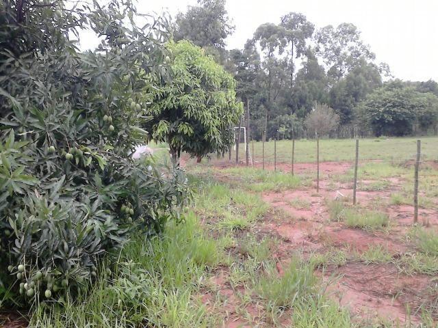 Terreno comercial as margens do asfalto - entrada + parcelas - Foto 6