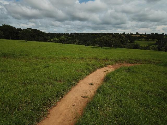 Fazenda em Bela Vista de Goiás de 15 Alqueires, à 45 km de Goiânia Dentro da Cidade - Foto 5
