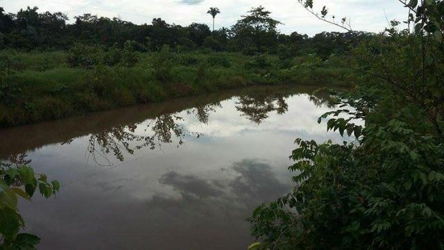 Chácara 23 Hc,Ribeirão do Gloria, perto de Agrovila das Palmeiras - Santo Antonio Leverger - Foto 8