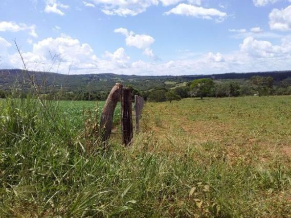 Fazenda toda formada de 5 alqueires no sapé - Foto 6