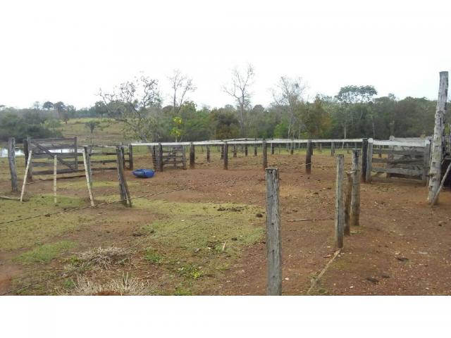 Chácara à venda em Zona rural, Pocone cod:20534 - Foto 5
