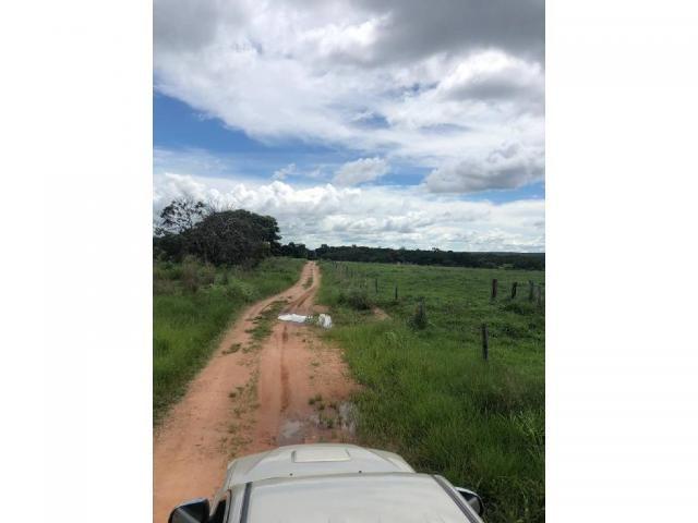 Chácara à venda em Rural, Nova mutum cod:22068 - Foto 9
