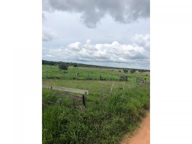 Chácara à venda em Rural, Nova mutum cod:22068 - Foto 20