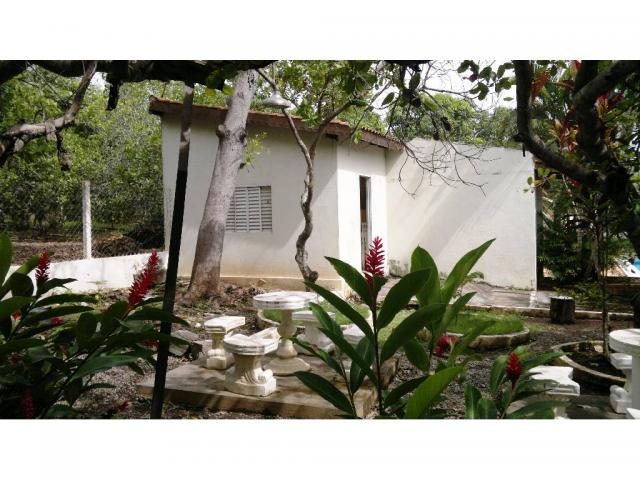 Chácara à venda em Zona rural, Nossa senhora do livramento cod:13185 - Foto 12