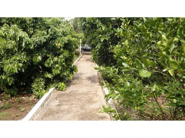 Chácara à venda em Zona rural, Nossa senhora do livramento cod:13185 - Foto 14
