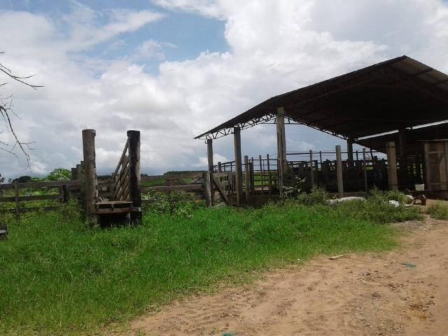 Chácara à venda em Rural, Nova mutum cod:22068 - Foto 2