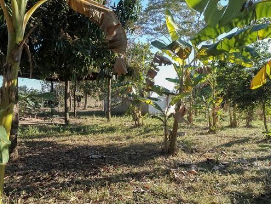 Chácara à venda em Zona rural, Santo antonio do leverger cod:21685 - Foto 10